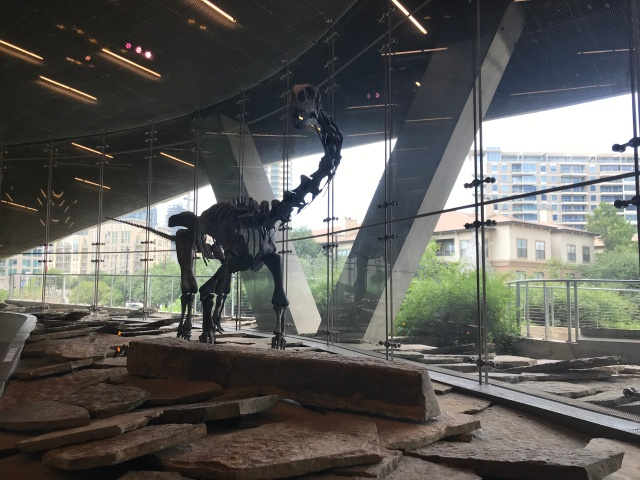 dinosaur skeleton on display in lobby of perot museum